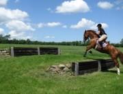 Step-jump-June