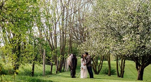 Wedding_SVE_0304